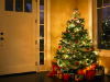 christmas-tree-in-hall