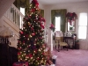 entrance-hall-christmas-tree