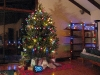 christmas-tree-low-cost_0