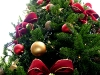 christmas-tree-red-ribbons