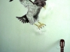 eagle-graffiti